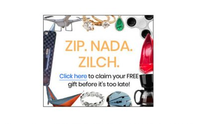 ZippoPay or How To Get Software For Free