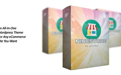 NINESTORE WordPress Theme Review